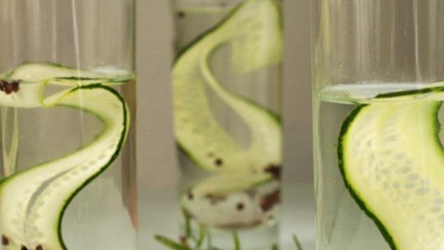 gin and tonic cucumber